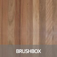 Brush Box Hardwood Flooring Species Information