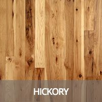 Hickory Hardwood Flooring Species Information