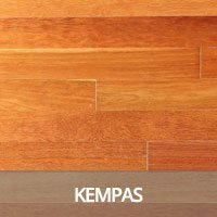 Kempas Hardwood Flooring Species Information