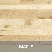 Maple Hardwood Flooring Species Information