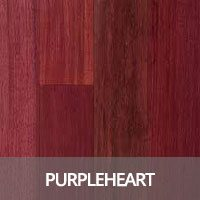 Purpleheart Hardwood Flooring Species Information