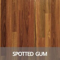 Spotted Gum Hardwood Flooring Species Information