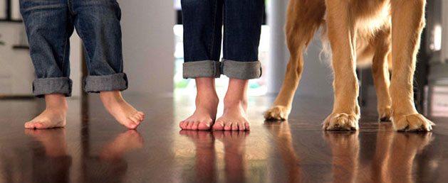 ESL Hardwood Floors hardwood floor care and cleaning